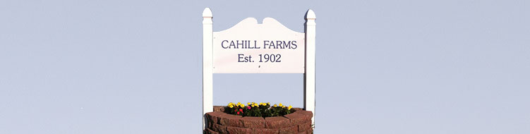 Welcome to the website of Cahill Farms, established in 1902